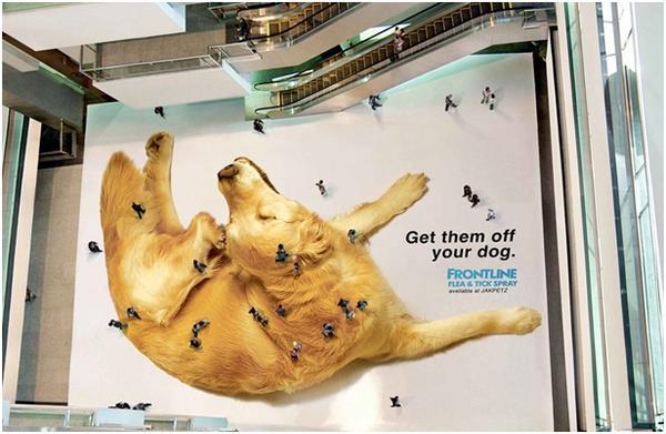 Indoor-реклама